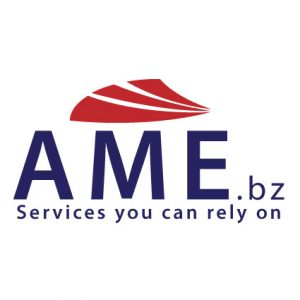 AME Consulting Group
