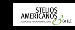 Stelios Americanos & Co LLC