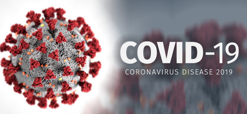 Coronavirus (Covid-19), French continuing plans and economy ...